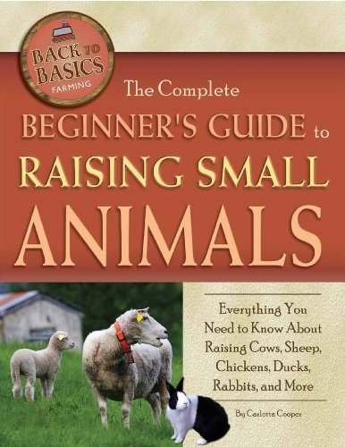 The Complete Beginner s Guide to Raising Small Animals: Everything You Need to Know About Raising Cows  Sheep  Chickens  Ducks  Rabbits  and More (Back to Basics: Farming)