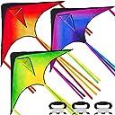 JOYIN 3 Packs Large Delta Easy to Fly Huge Kites