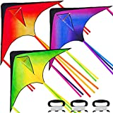 JOYIN 3 Packs Large Delta Kite Orange, Green and Purple, Easy to Fly Huge Kites for Kids and Adults with 262.5 ft Kite String, Large Delta Beach Kite for Outdoor Games and Activities