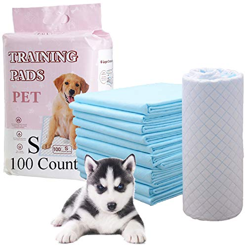 Herb Life Dog Pee Pads, Pee Pads for Dogs, Puppy Training Pads, Super Absorbent & Leak-Free Potty Pads for Dogs, Pet Pads, Kids, Adults, Elderly - Liquid, Urine, Accidents (S)(13X17.7in/100 Count)