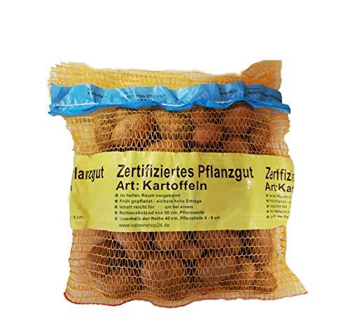 Samenshop24® Pflanzkartoffeln Sorte: Linda, Inhalt: 5kg (ca. 70 Stück), Premium Saatkartoffeln, Zertifiziertes Pflanzgut, das Original vom Fachmann