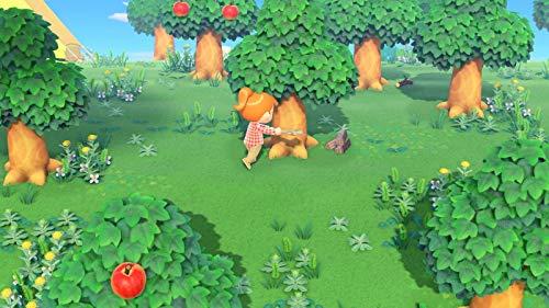 Animal Crossing: New Horizons [Nintendo Switch] - 6