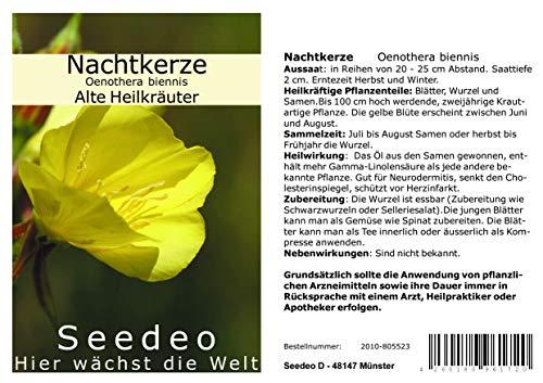 Seedeo Nachtkerze (Oenothera biennis) 200 Samen