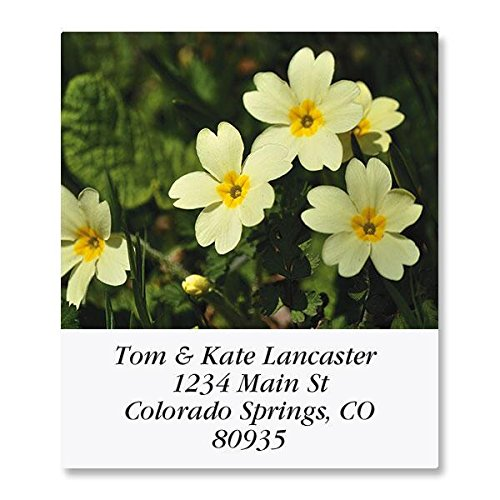 Natures Wildflowers Self-Adhesive, Flat-Sheet Select Address Labels (12 Designs)