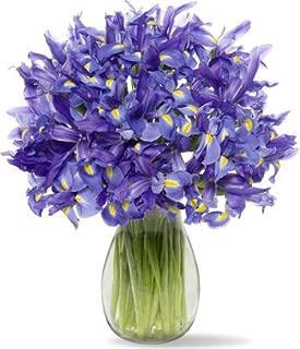 30 Blue Iris with Jordan Vase
