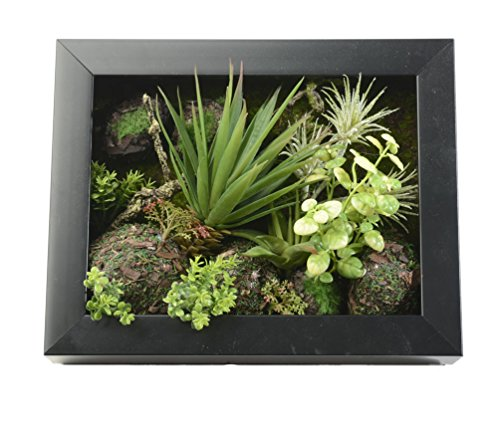 3D Artificial Flowers Wall Hanger Succulent Plants Aloe Green Leaves Grass Moss Stone with Imitation...