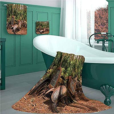 Rustic 3 Piece Bath Towel Set, Rusty Broken Down Tractor Mule Truck Deep in Forest with Tropical Palm Trees Image, Picture Print Bath Towel 3D Digital Printing Set Brown Green