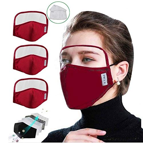 Gokeop 100% Cotton Outdoor Haze Dust Face Health Protection Face Bandanas with Eyes Shield (PVC) + 2 Filters (In Total 3pcs + 6Filter), Protect Eyes, Nose and Mouth (Red)