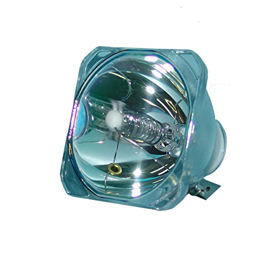 SpArc Bronze for InFocus LP70 Projector Lamp (Bulb Only)