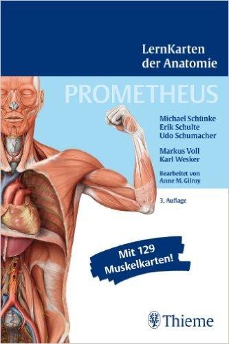 PROMETHEUS LernKarten der Anatomie ( 8. August 2012 )