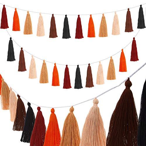 WILLBOND 4 Pieces Cotton Tassel Garland Valentine Colorful Tassel Banner Decorative Wall Hanging for Wedding, Pre-Assembled (Black, Dark Brown, Pink, Brown, Orange, Rust Red,6.2 Inch)