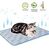 lembrd Kühlmatte für Hund & Katzen Kühldecke Hundekühlmatte Katzekühlmatte Kühlkissen Pet Cooling Mat Hundedecke Selbstkühlende Haustier Matte - Blau - 70 × 100 cm