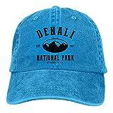 Gymini Denali National Park - Gorra de béisbol para adultos, lavable, algodón, protección solar, color azul