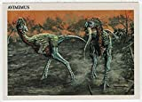 Avimimus - Dinosaurs: The Mesozoic Era (Trading Card) # 15 - Redstone Marketing 1993 Mint