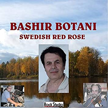 Swedish Red Rose