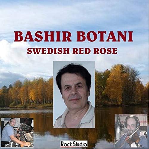 Bashir Botani feat. Ove Wahlqvist & Håkan Linn