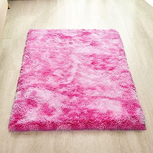 Tapis de Velours QUANHAO | Tapis antidérapant | Tapis en Peluche, Tapis épais, Tapis de Zone, adapté à la décoration de la Maison, Coussin de canapé de Salon (Rose Clair, 80x120cm)