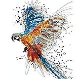 DIY Digital Painting Color Bird 16X20 Zoll Umweltfreundliche Acryl Adult Ölgemälde Set Geeignet Für Verschiedene Technische Ebenen