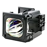 FI Lamps SAM_HL-T6176S_23 Compatible for Samsung HL-T6176S Replacement Rear Projection TV Lamp BP96-01795A