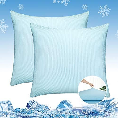 Luxear Juego de 2 fundas de almohada refrescantes