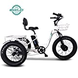Emojo Electric Fat Tire Tricycle/Trike, 500W 48V Hybrid Bicycle/E-Bike with Lithium Rechargeable Battery, Oversize Rear Cargo and Front Basket for Heavy-Duty Carrying or Delivery (Caddy Pro)
