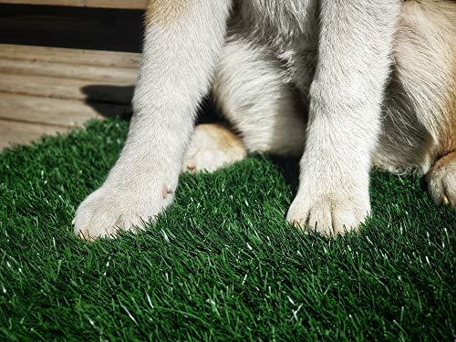 LOOBANI Dog Grass Potty/Pee Pad