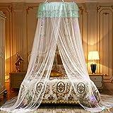 Hankyky - Mosquitera para cama de matrimonio, diseño de princesa blanco