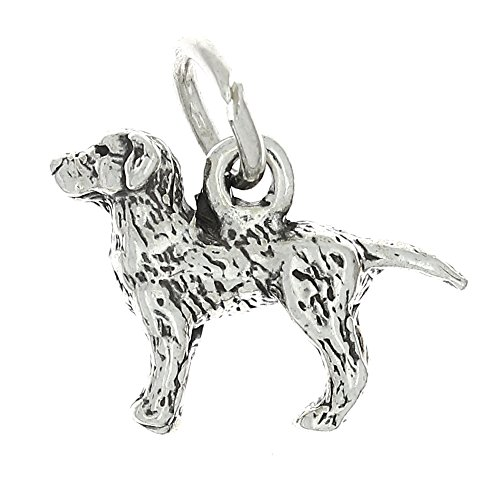 18 best lab dog charm for 2020