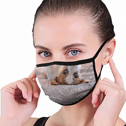 Mascherina per bocca, simpatico cane Jack Russell Terrier Nature con stampa per la bocca per la protezione dal polline della polvere.