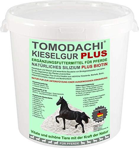 Kieselerde Plus Bierhefe Natur pur Ergänzungsfuttermittel Pferd Silizium Plus Biotin für eine ausgewogene Ernährung reich an natürlichem Silizium, Calzium, Mineralien, Spurenelementen 2 Liter Eimer