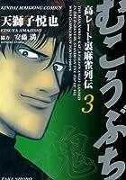 むこうぶち 高レート裏麻雀列伝 (3) (近代麻雀コミックス)