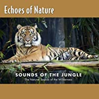 Jungle Talk, Natural Sound Ofthe Wilderness