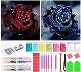 Bellatoi 5D Diy Pintura diamante taladro completo kit,2Pcs Rosa Diamantes de imitación de Diamante Bordado de Punto de Cruz Lienzo Pared Decoración
