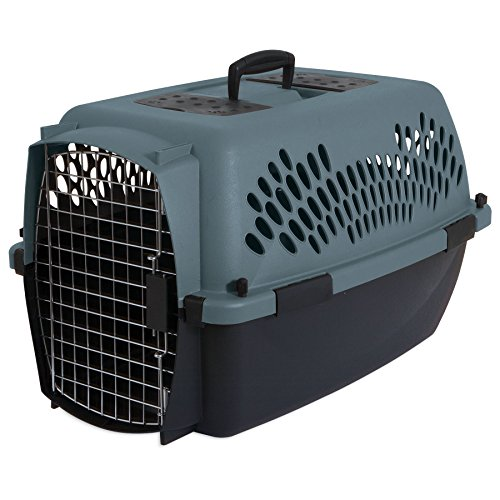 "Aspen Pet Porter Heavy-Duty Pet Carrier, Storm Grey, 24"", for Pets 10-20 Lbs."