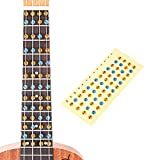 HOT SEAL Ukulele Finger Guide Sticker Fingerboard Guide Fretboard Marker Label Finger Chart for Practice Beginners (Colorful)