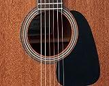 Immagine 1 takamine chitarra acustica dreadnought