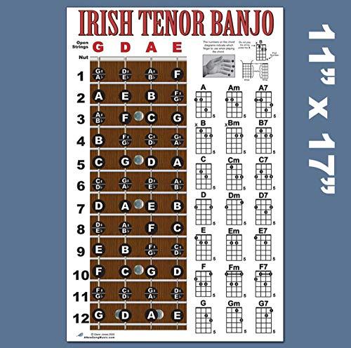Irish Tenor 4 String Banjo Fingerboard Notes & Chord Poster Wall Chart 11x17