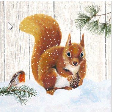 Lot de 20 serviettes en papier Motif écureuil Oiseau en hiver/animaux / hiver/Noël
