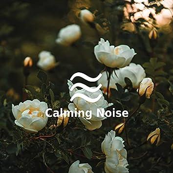 Nap Time Noise