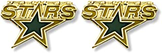 Aminco NHL Dallas Stars Logo Post Earrings