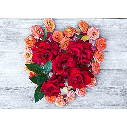 Fondo de fotografía de Vinilo Props Día de San Valentín Tema de Rosa Fondo de fotografía Cortina de Fiesta de Boda A14 9x6ft / 2.7x1.8m