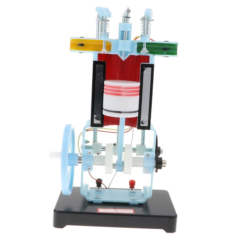 CUTICATE ディーゼル エンジン 4 ガソリン エンジンモデル 物理教育モデル 玩具