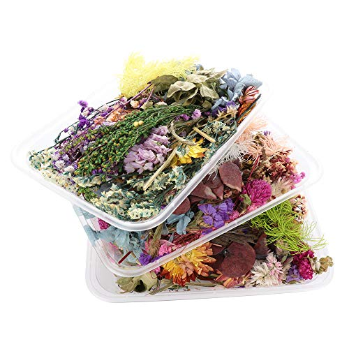Keebgyy Getrocknete Blumen, trockene Pflanzen für Aromatherapie, Kerze, Epoxidharz, Anhänger, Halskette, Schmuckherstellung, Bastelzubehör