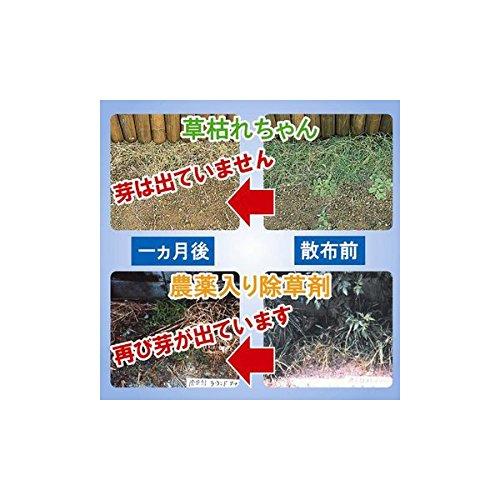 後藤 除草材 草枯れちゃん 1kg [0688]