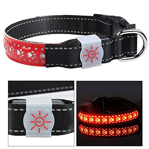 VINGVO Collar LED para Mascotas, Collar LED para Perros con Carga USB, Collar Recargable Collar LED para Perros Collar Brillante para Mascotas para Perros, Cachorros, Gatos, Mascotas(Red, S Code)