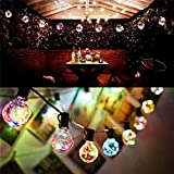 Brand World 10 Clear Globe Bulbs Color Changing Flashing Waterproof | LED String