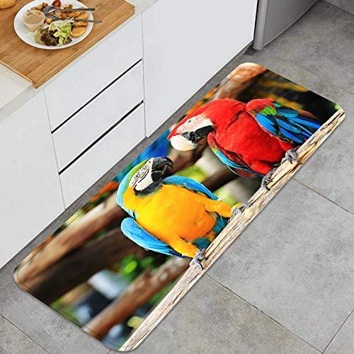 ZUL Küchenmatte Teppich,Bunte Paararas, die auf Baumstamm sitzen,für Küche Bodenhaus Büro Waschbecken Wäscherei Super saugfähig und rutschfest