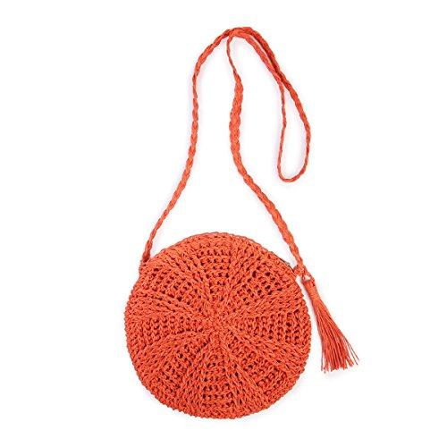 Riah Fashion Women's Woven Straw Beach Cross Body Bag (Rust)