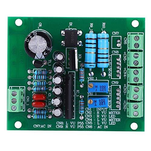 VU Meter Driver Board, DB Audio Level Amplifier Meter,Stereo Back Light Registrazione AC 12V