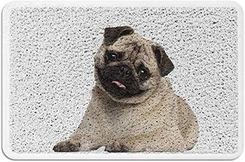 Felpudo Pug Alfombras con Respaldo de Goma de PVC Alfombras de Piso Alfombra Antideslizante para Puerta de Entrada Cachorro Interior al Aire Libre